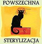 akcja sterylizacji kotów