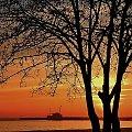 ...o poranku #sunrise #wschód #morze #sea #molo #matina #Sopot