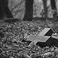 OPUSZCZONE CMENTARZE ZACHODNIEJ POLSKI #fotmart #WMoimObiektywie #wojtekwrzesien #święto #listopad #fotografia #zdjęcie #groby #cmentarzyk #Bodenhagen #Bagicz #FestungKolberg #kolberg #kołobrzeg #samotność #smutek #droga #krajobraz