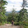 Na szlaku #Góry #BaraniaGóra #BeskidSląski