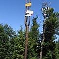 Szczyt #Góry #BeskidŚląski #Szyndzielnia #Klimczok #Skrzyczne