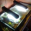 2x Aquael DecoLiht akwarium 54L 60cm długości #akwarium #aquael #decolight #małe #oświetlenie #rybki #światło