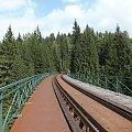 Most Izerski od góry.Doszłam prawie na połowę i stchórzyłam... #CytrynekListkowiec #CzerwończykŻaczek #CzyżZwyczajny #górówka #GóryIzerskie #Izera #Izerka #KarlątekKreseczka #kolej #most #motyle #NiedźwiedziówkaGosposia #RusałkaPawik