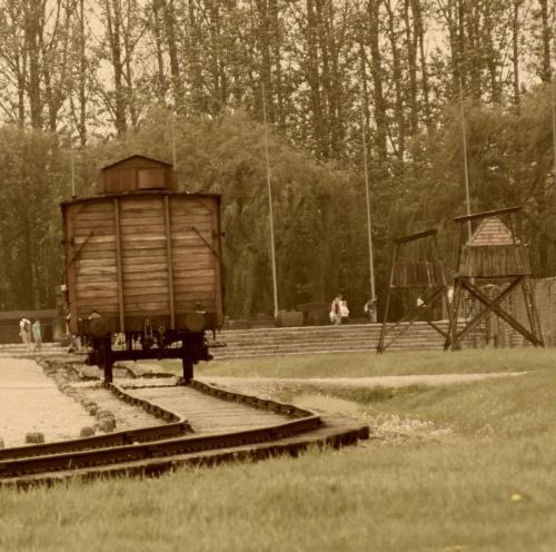 #AuschwitzBirkenau #ludzie #śmierć #tory #wagon