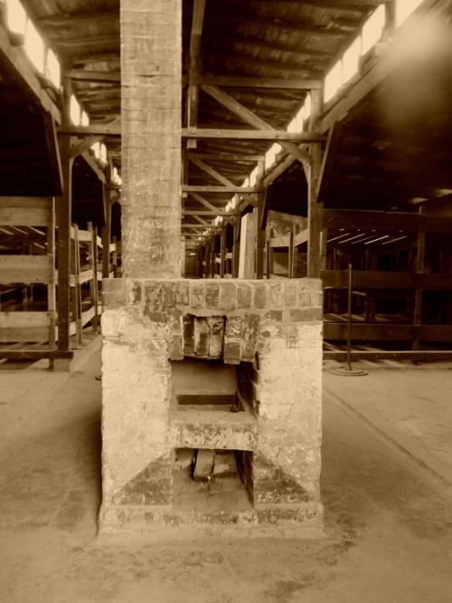 #AuschwitzBirkenau #ból #głód #komin #śmierć #tragedia