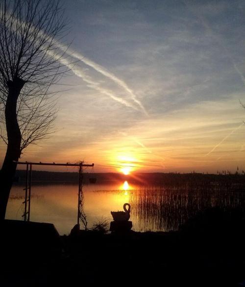 Wieczór na mojej działeczne. Natura jest najwspanialszym artystą. #jezioro #niebo #wieczór #ZachódSłońca