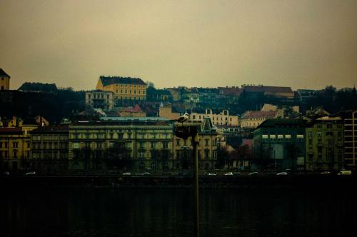 #Budapeszt #ptak #miasto #panorama #rzeka